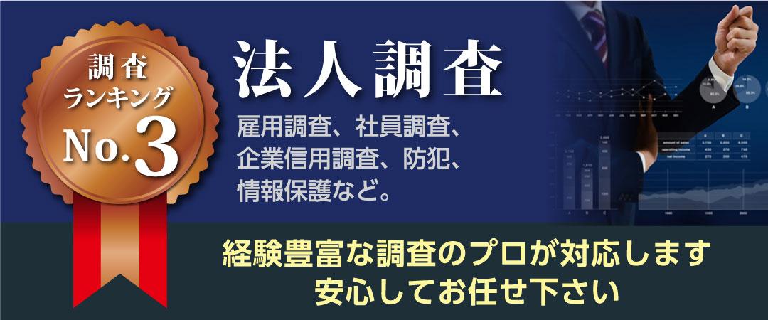 茨城のつくば探偵事務所ランキングNo.3法人調査